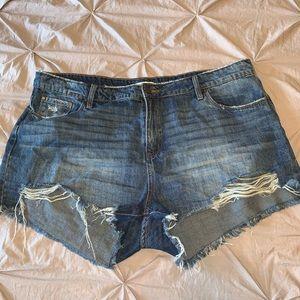 BP distressed shorts